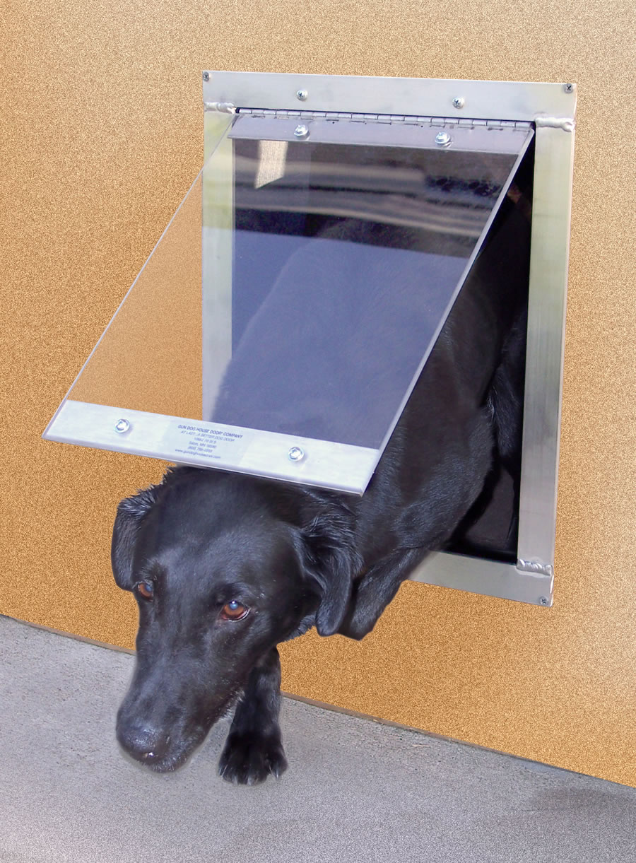 Electronic Doggie Door