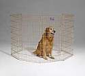 8 Panel Exercise Pen with Door - Gold